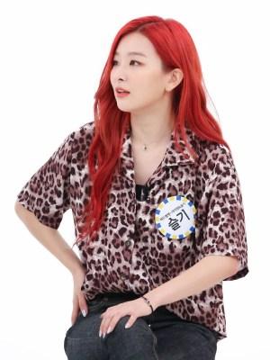 Leopard Chiffon Shirt | Seulgi – Red Velvet