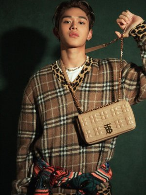 Plaid Sweater With Leopard Print | Lucas – NCT