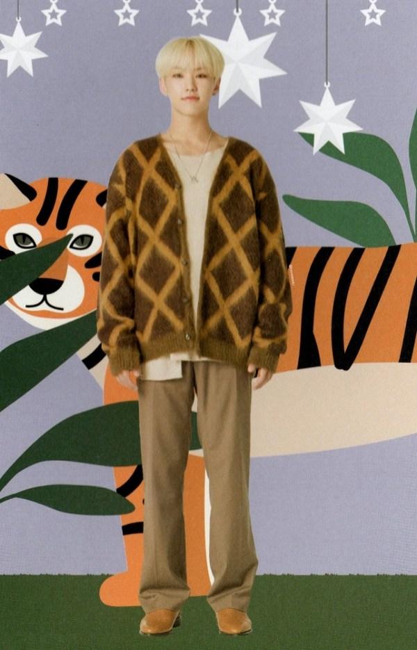 Grid Patterned Cardigan | Hoshi – Seventeen