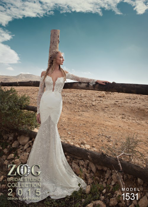 Fascinating Wedding Dresses (15)
