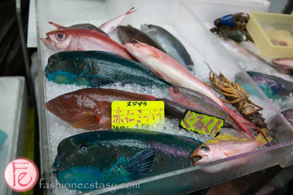 Humphead Parrotfish