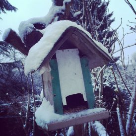 winter_snow1_jan15