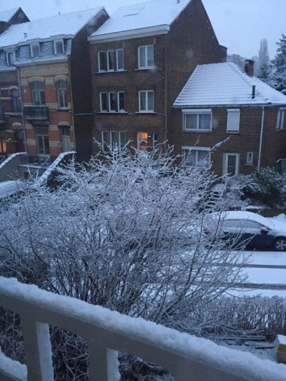 winter_snow2_jan15