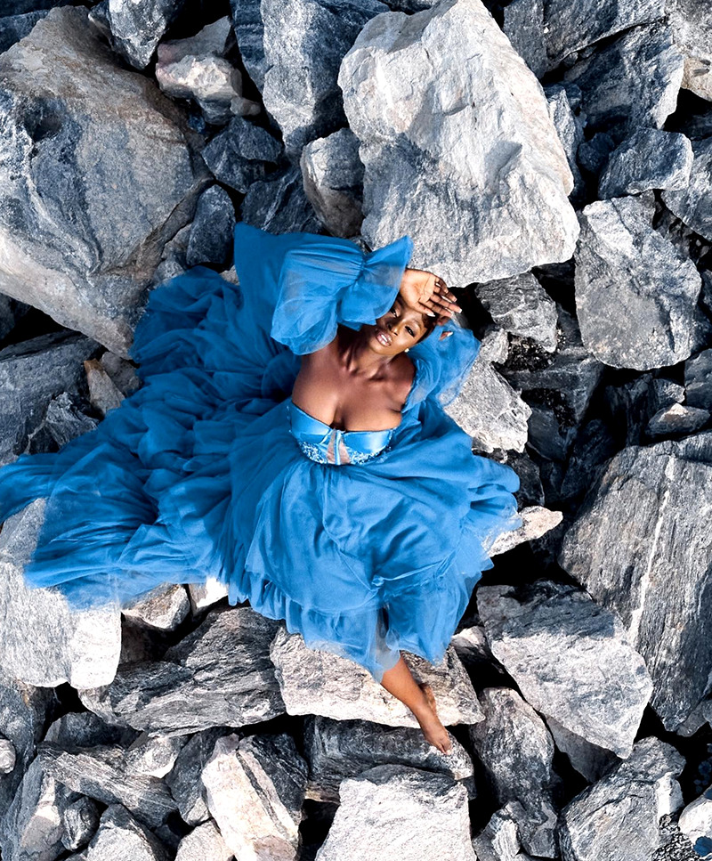 chiffon organza dress
