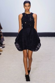 giambattista-valli-fall-winter-2014-show21