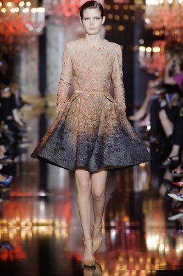 elie-saab-2014-fall-haute-couture-show31