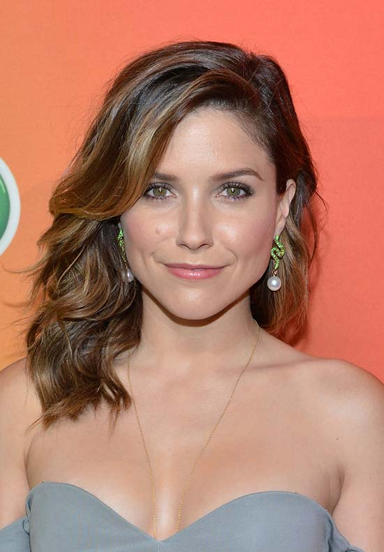Summer 2015 Hairstyles: Sophia Bush