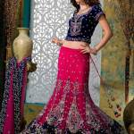 Bridal Lehengas Collection Pakistani Wedding Dresses 2014 For Bridal Pakistani Wedding Dresses 2014 For Bridal Traditional Amazing Bridal Wedding Lehengas Collection