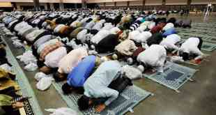 non-muslims have no muslims only  hear the call towards islam Non-Muslims have no Muslims only  Hear the Call Towards Islam muslims