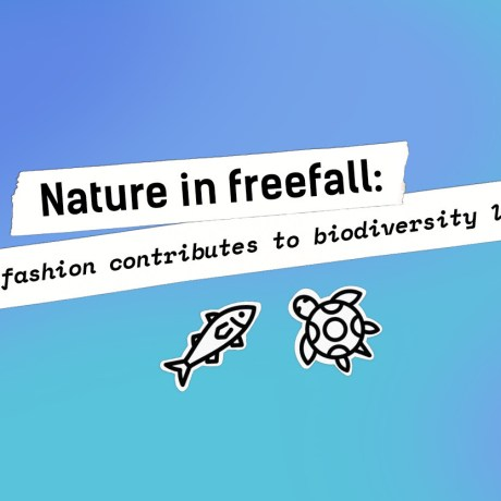 Nature in Freefall: How Fashion Contributes to Biodiversity Loss