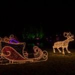 Christmas Garden Berlin 2017