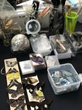 A table of materials to be used by a class of people on a skull decorating workshop with Moth Studios in Newcastle. These include pinned butterflies, peacock feathers, fake flowers, pearls and diamantes. - Fashion Voyeur Blog
