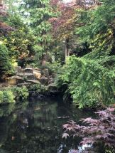 The still pond and purple leaves of the Japanese Ornamental Garden at Slaley Hall in Northumberland - Fashion Voyeur Blog