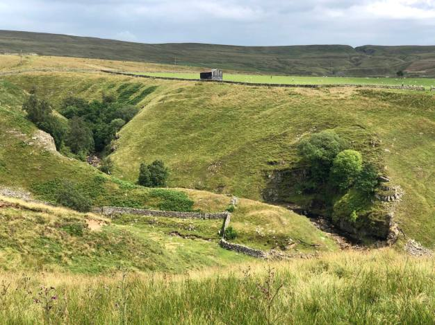 An image of the countryside in Bowlees, Upper Teesdale in County Durham showing a small house in the distance