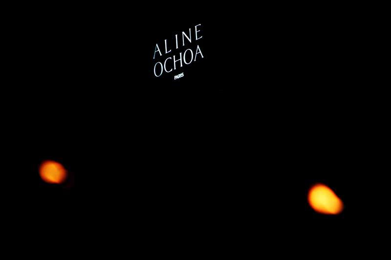 Aline Ochoa F14 presentation (1)