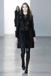 Calvin Klein Collection F15 (1)