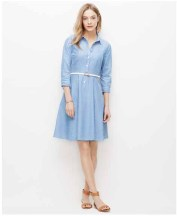 Ann Taylor S15 ShirtDress (4)