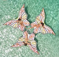 Missoni Funboy Butterfly Float (6)