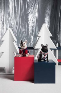 Moncler Poldo Dog Couture