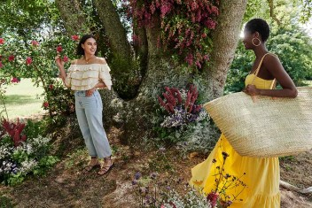 Mango Life in Bloom