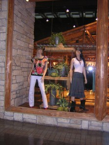 Store Windows in Dallas - Pinto Ranch
