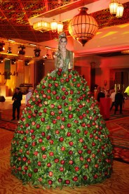 Apple Gown