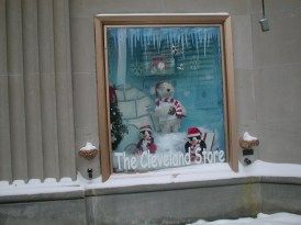 Store Windows in Cleveland