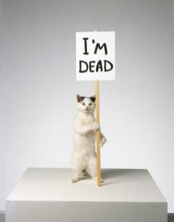 David Shrigley - I'm Dead, 2007