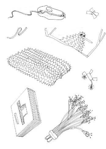 Sketches realized By Maurizio Galante & Tal Lancman