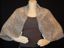 Morgan-cheetah