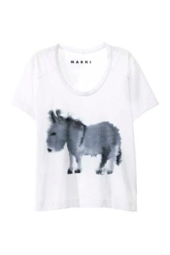 MARNI Saturday Morning T-shirt Donkey
