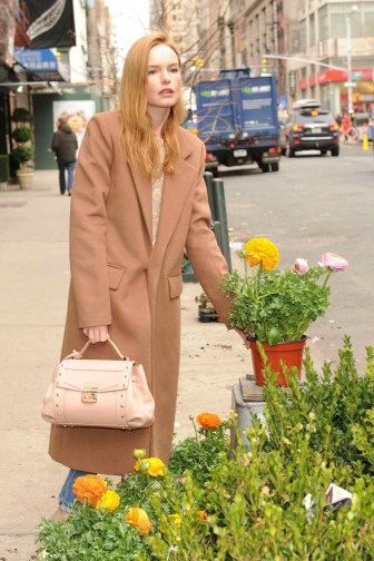 Kate Bosworth Enjoying a Spring Afternoon