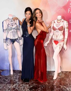 Victorias Secret Fantasy Bra Fit LV (23)