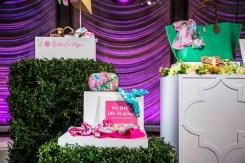 Lilly Pulitzer for Target (2)