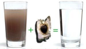 Le traitement efficace de l'eau avec la graine de Moringa