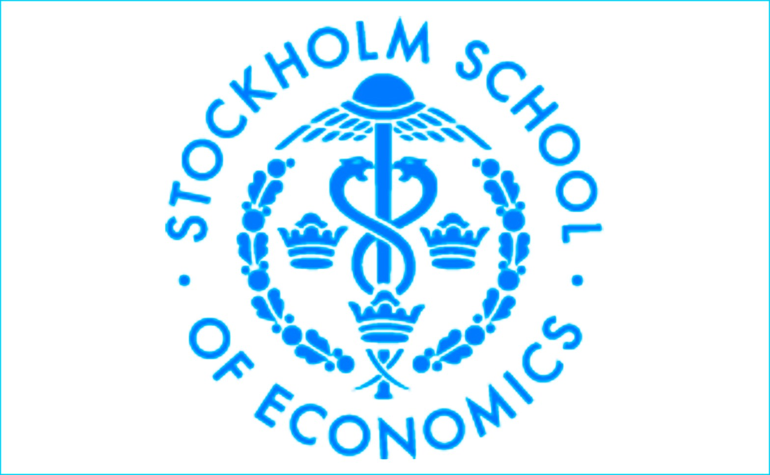 Stockholm School of Economics EIJS