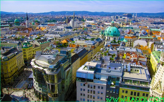 Vienna tips: Heurigen, Tafelspitz, Lippizaner and Schloß Schönnbrunn. Here are some insider tips from a true Wiener for you to enjoy your stay in Vienna.