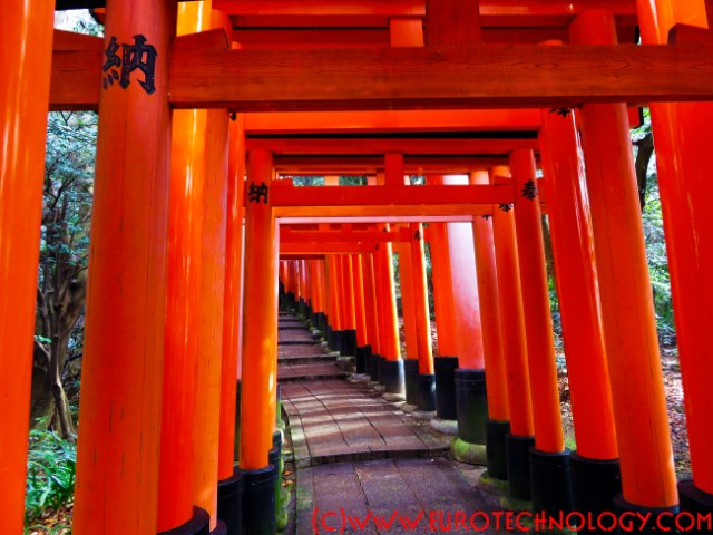 Fushimi Inari Shrine (伏見稲荷大社) and Sentorii (千鳥居)