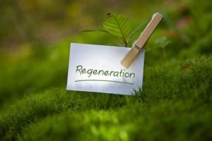 Heilfasten zur Regeneration