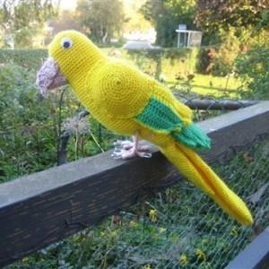 Gul papegøje