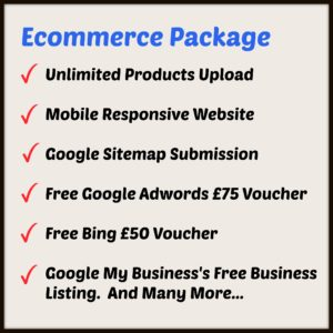 Ecommerce Package for your business