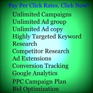 Pay Per Click PACKAGES 1