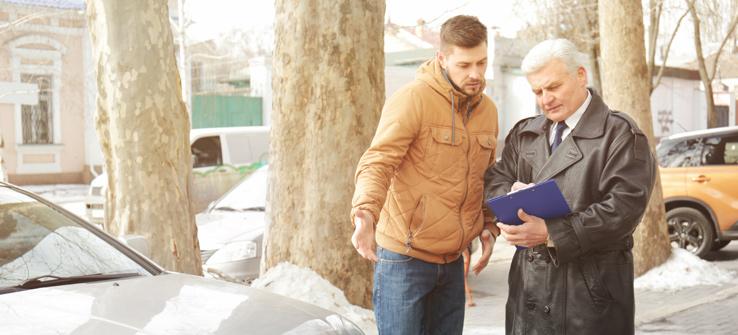 Tree Emergency car insurance adjuster