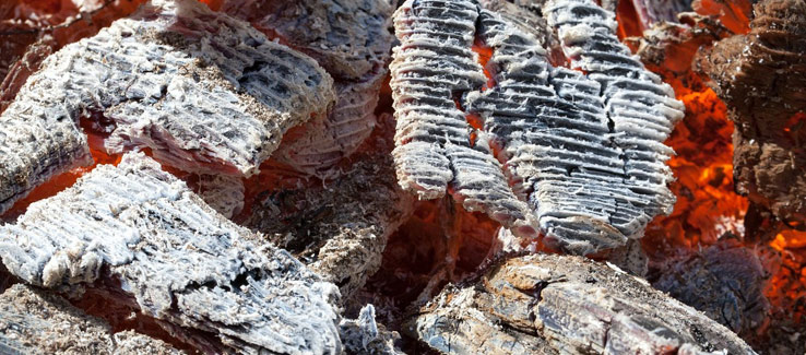 Wood ash used as fertilizer for alkaline pH