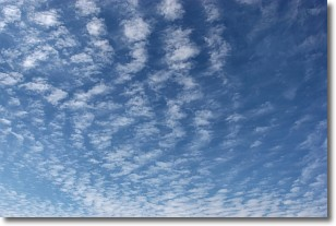 What Are Cirrocumulus Clouds