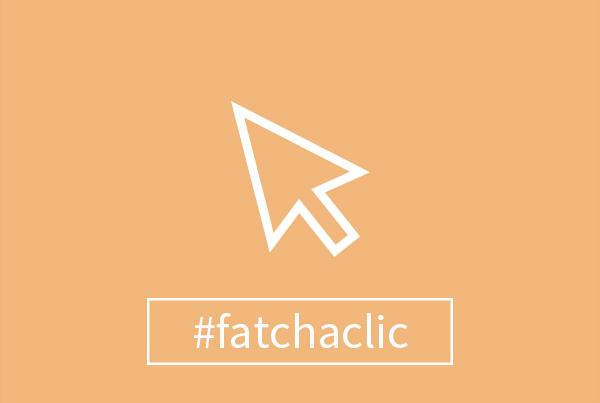 portfolio-fatchaclic