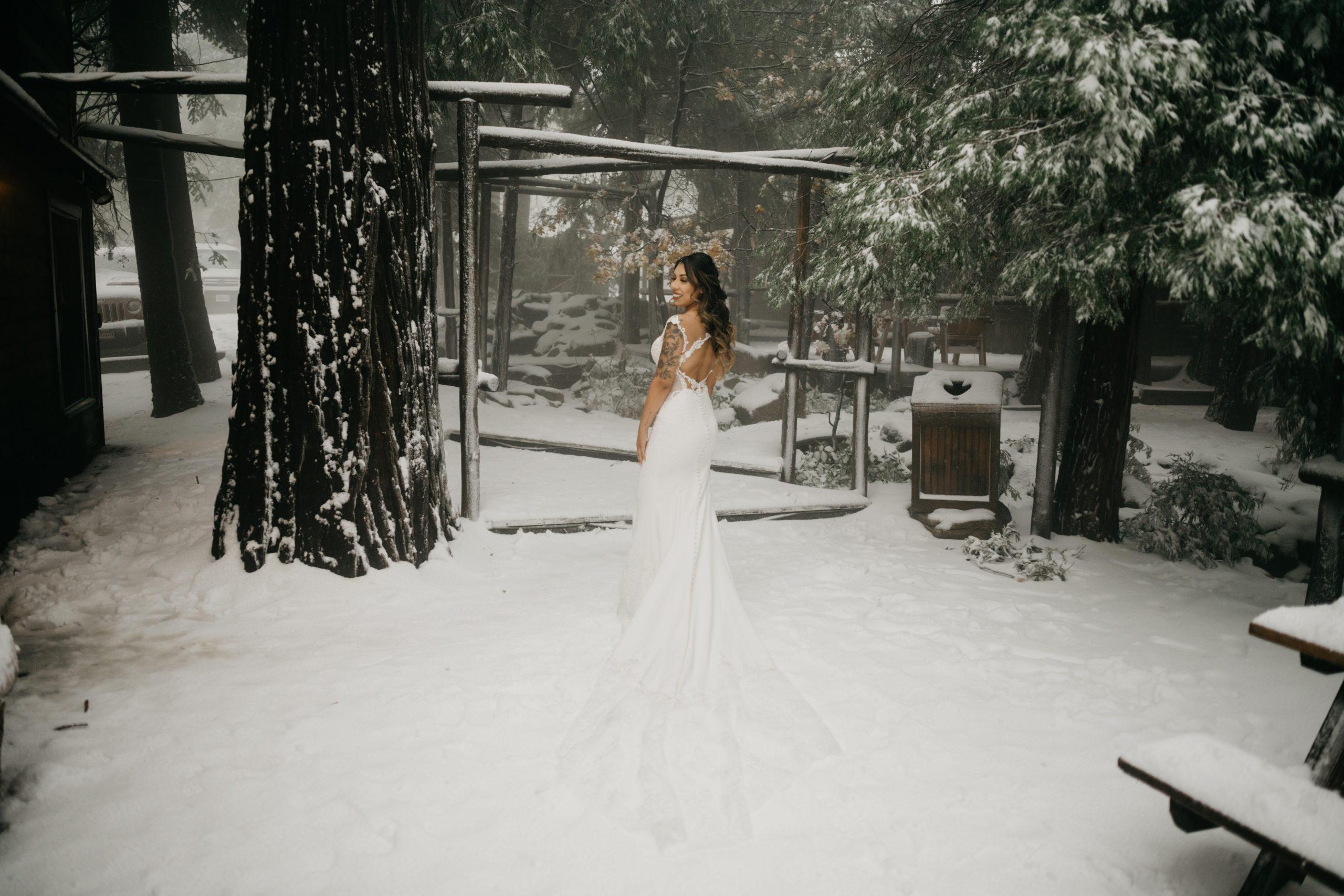 Bride Portrait in the snow, image by Fatima Elreda Photo