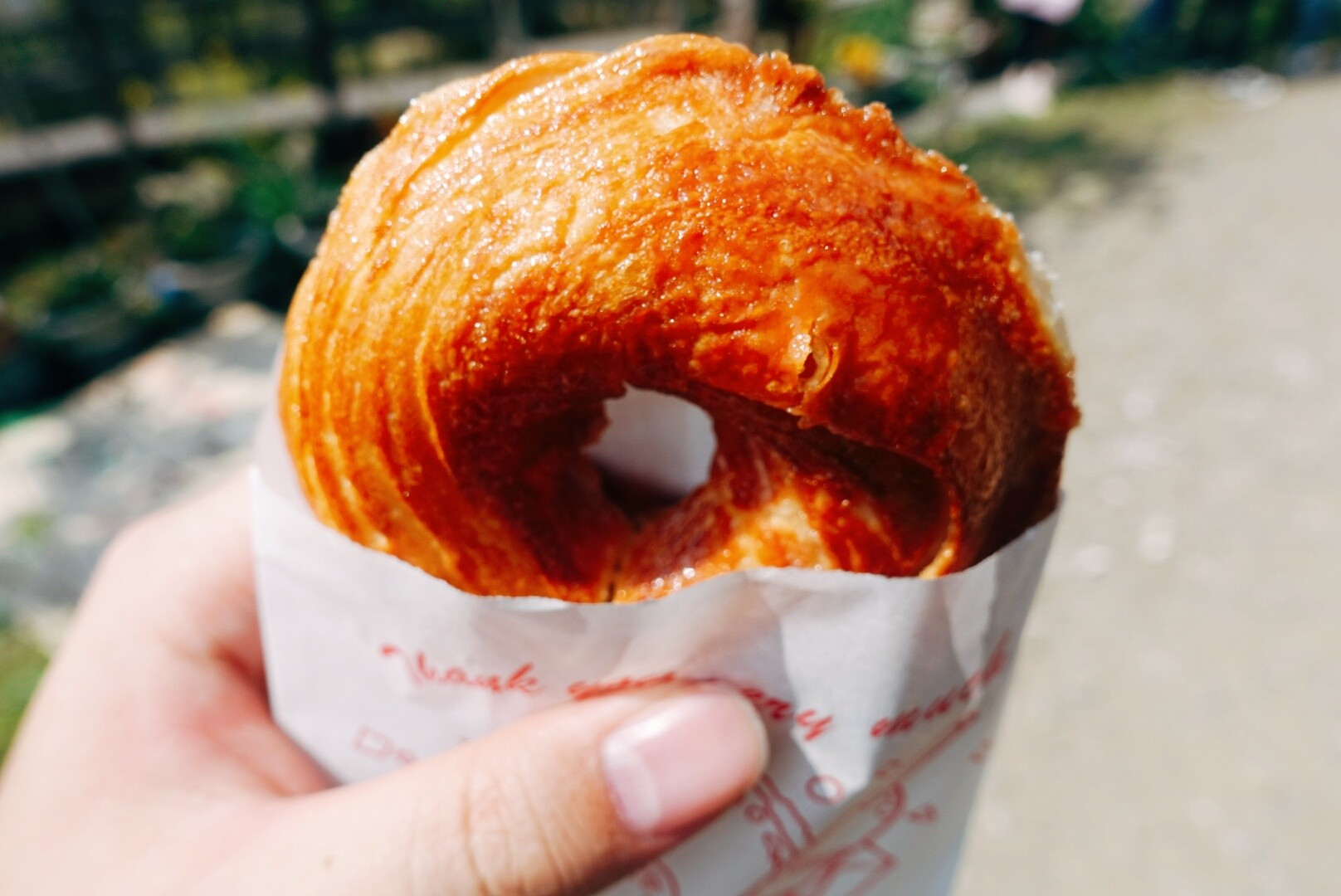 檜木甜甜圈