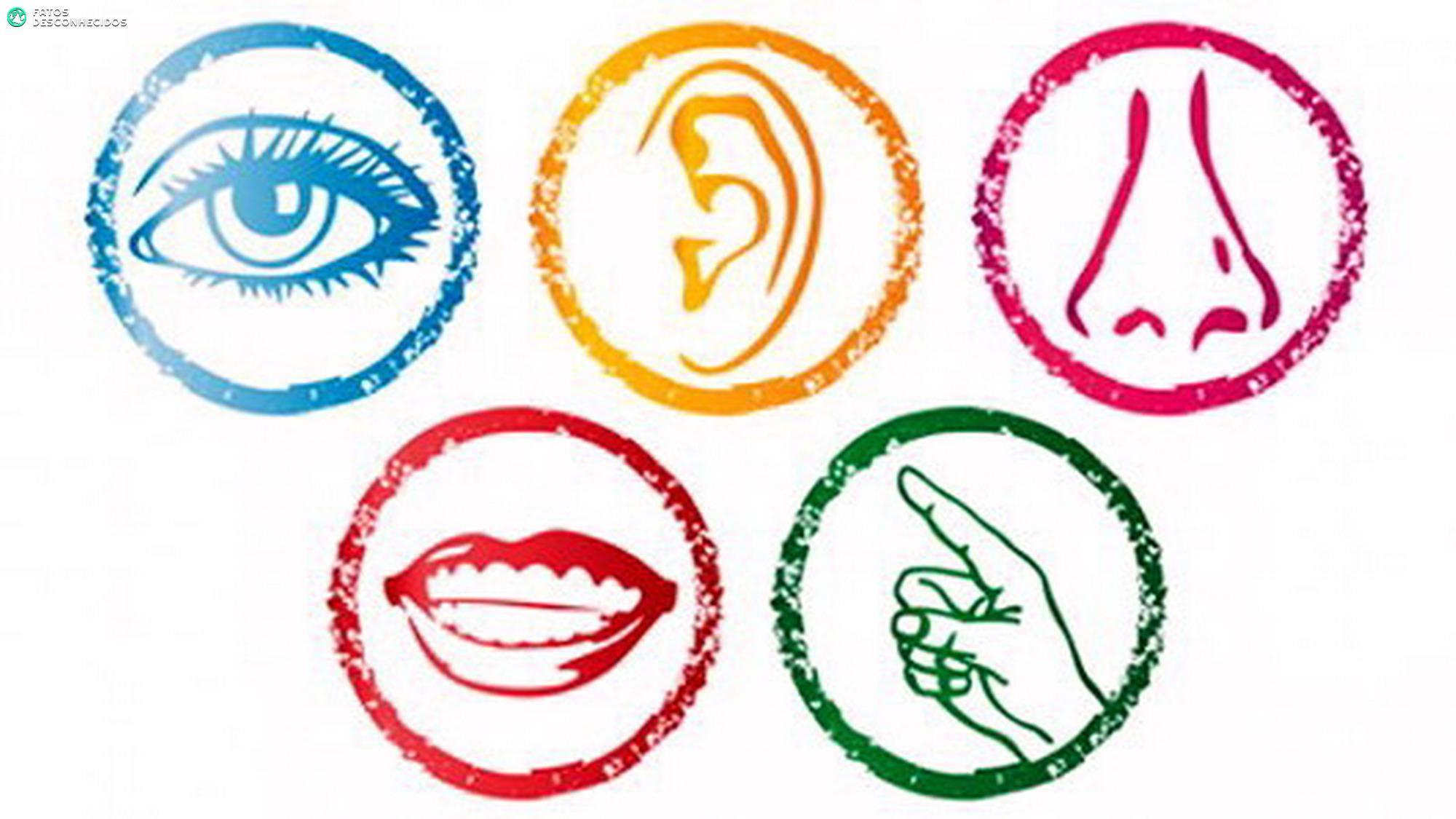 Quebrando Mitos Todos Temos Mais De 5 Sentidos