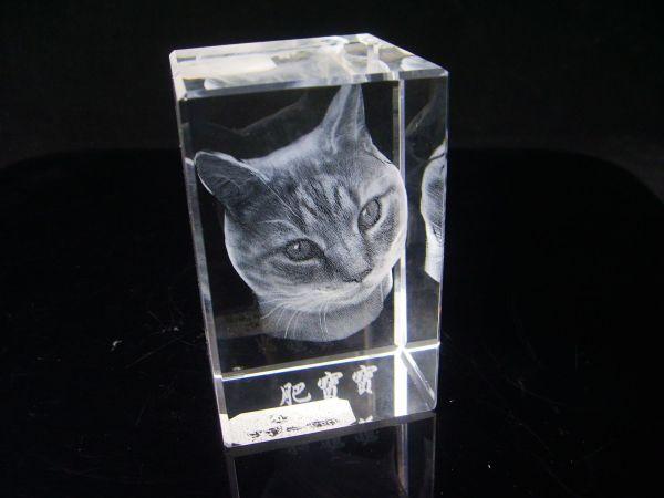 3d Crystal Engraved Photos 1 600x450, Fatos Desconhecidos